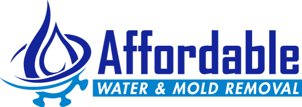 affordable water and mold removal